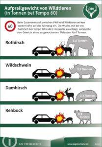 Aufprallgewicht von Wildtieren